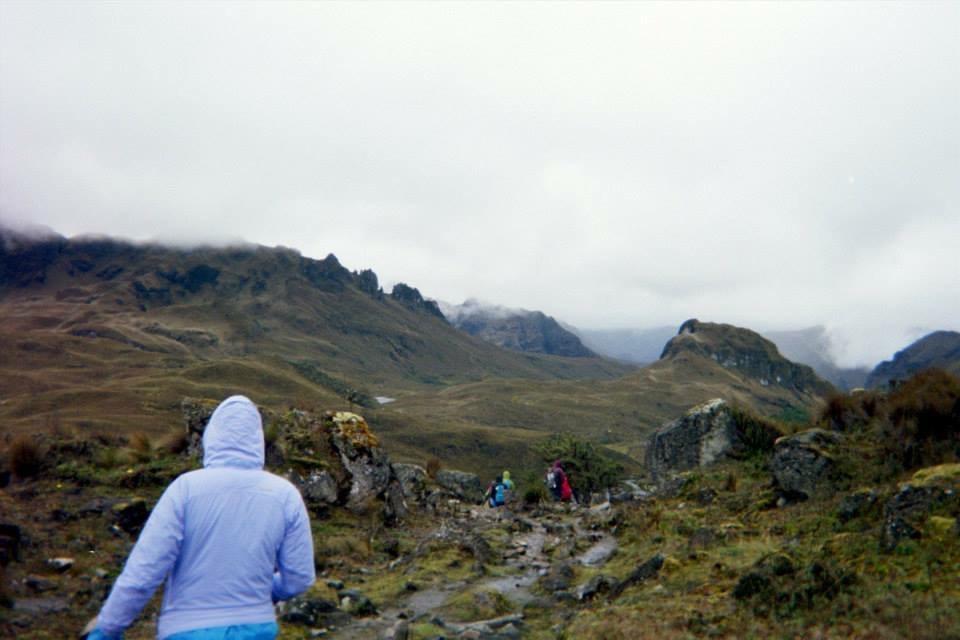 A Cloud Forest in Ecuador