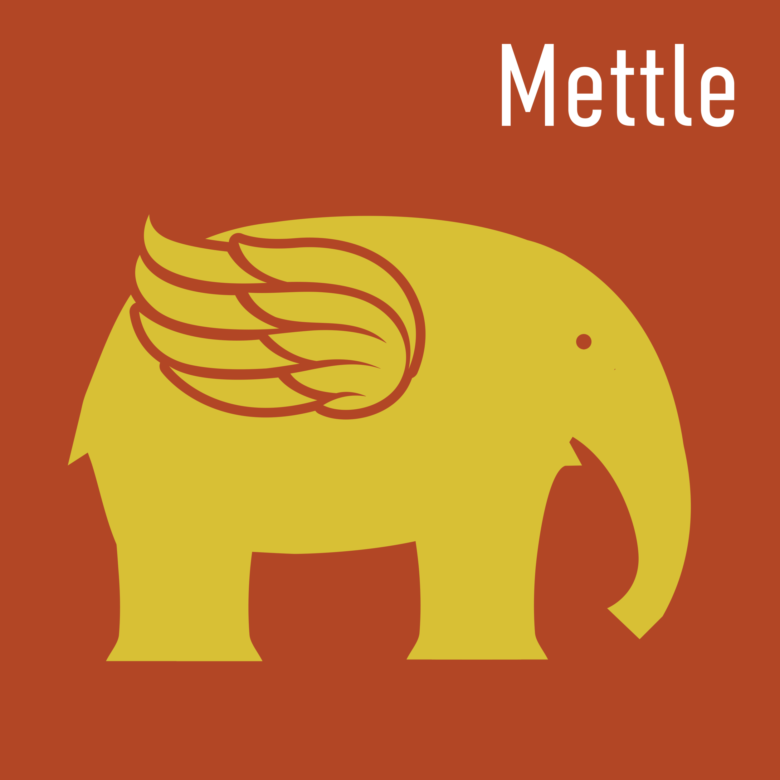 #Mettle is our collective wisdom podcast series.