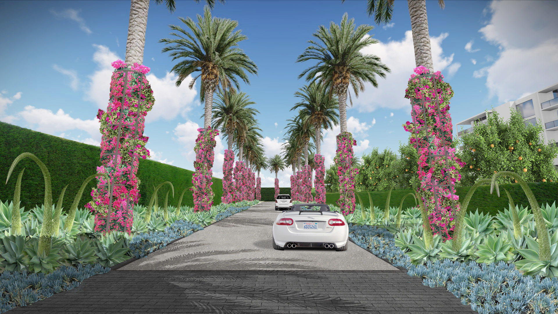 Palm Entry Drive_rev2.jpg