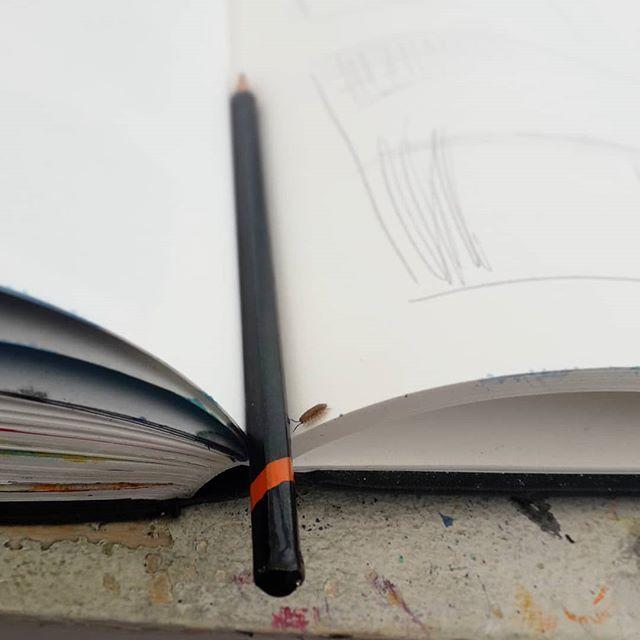 'Assistant' . . . . . . #studiovisitor #studiohelper #woodlouse  #bugs #scaredmetodeath #sketchbookwork #inthestudio #artstudio #artincornwall #cornwallartist #artday