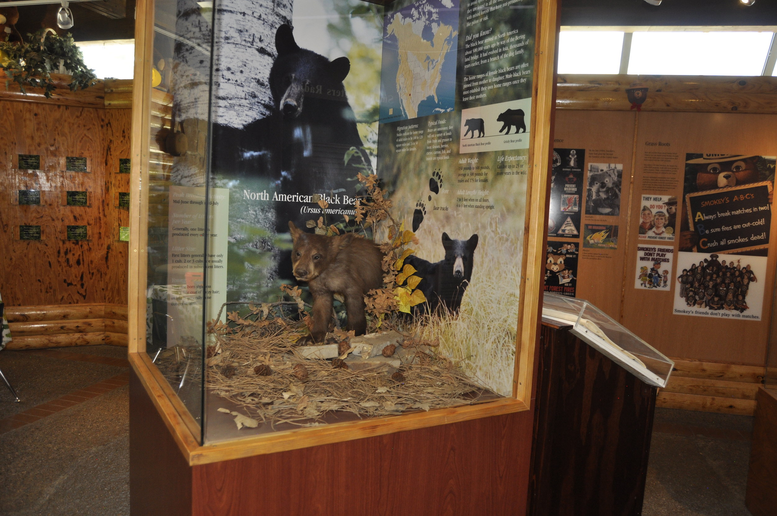 museum-photos_013.JPG