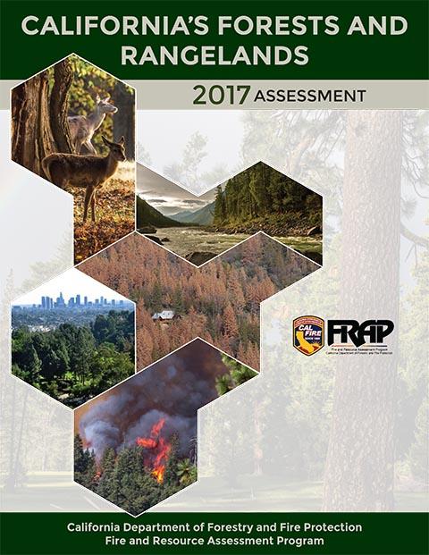 Assessment2017-1.jpg
