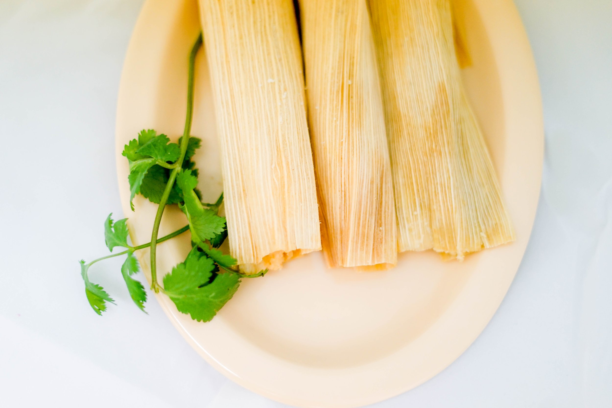 <p><strong>Colorado Tamales</strong><i>More →</i></p>