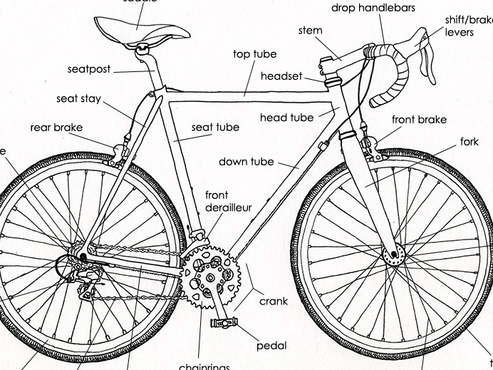 Copy+of+BikeAnatomy.jpg