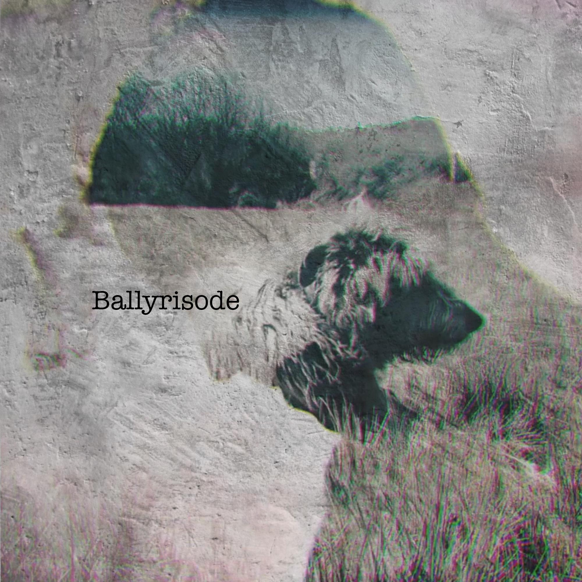 ballyrisode_image.jpg