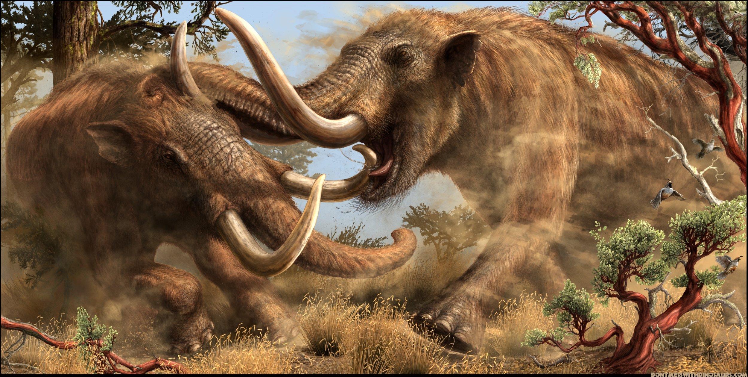 MastodonsForFinalPproval (2).jpg
