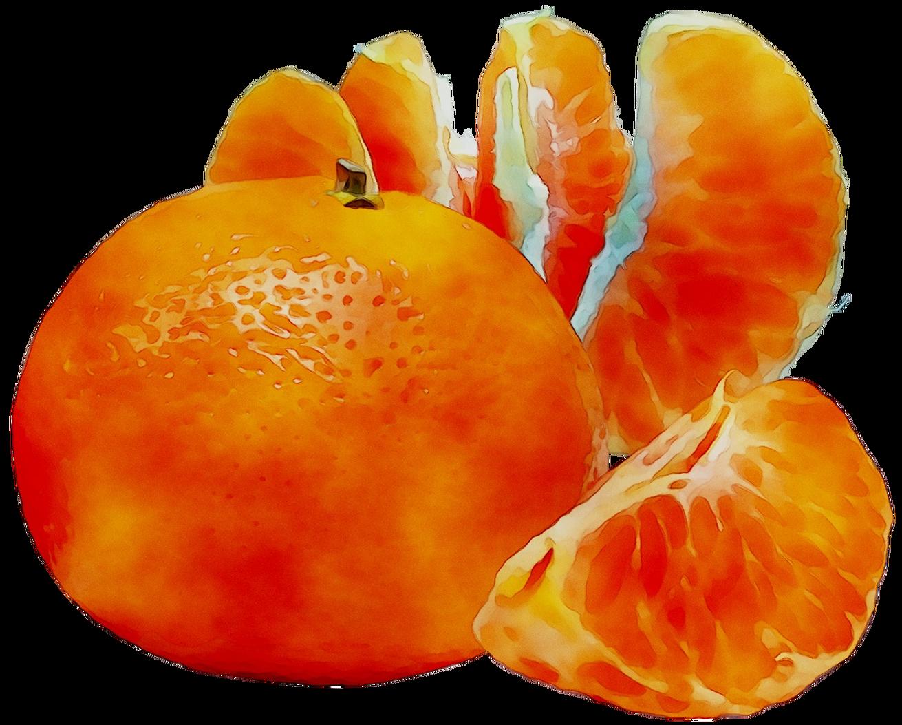 kissclipart-dibujo-mandarina-png-clipart-juice-cocktail-mandar-660e9455a4cd7206.png