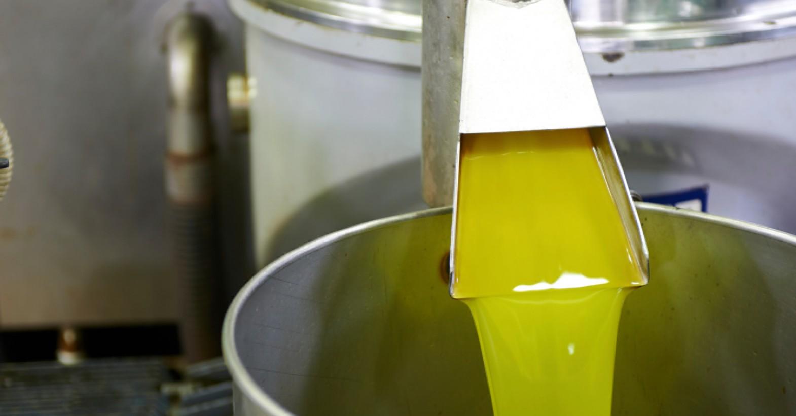 Olive-Oil-Pressing-1 (1).jpg