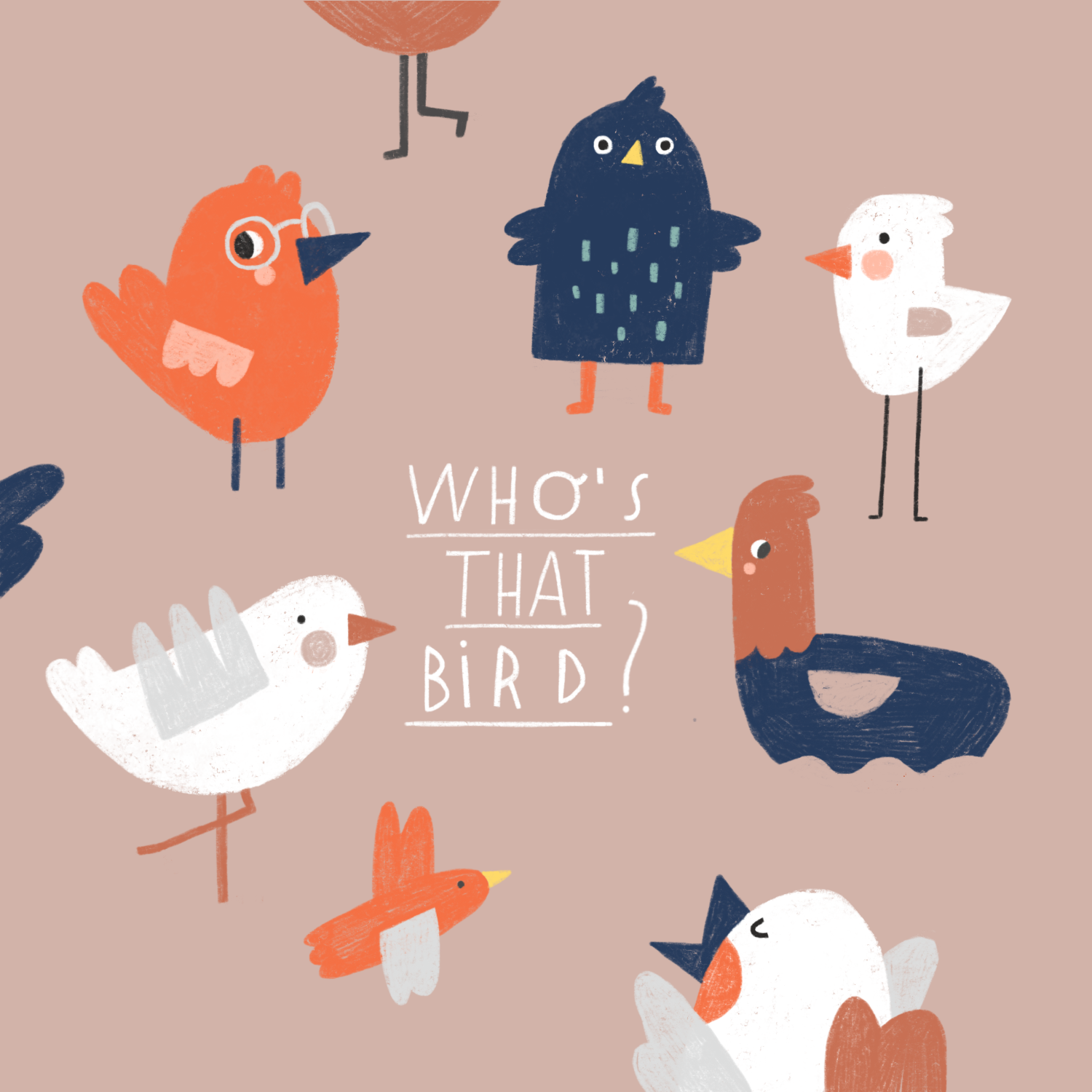 whosthatbird.png