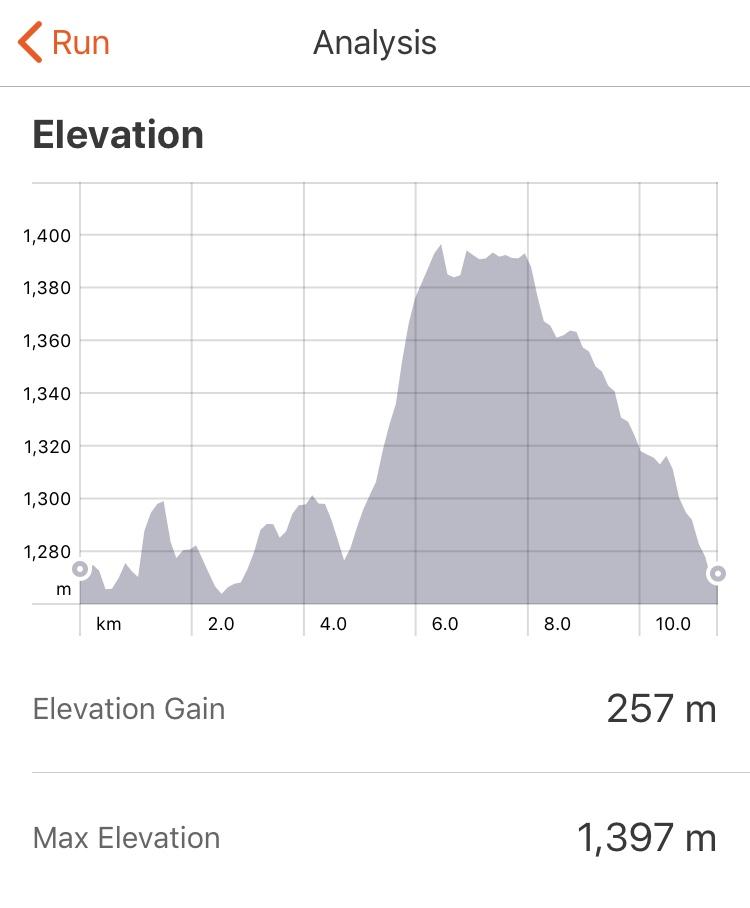strava hill.jpg