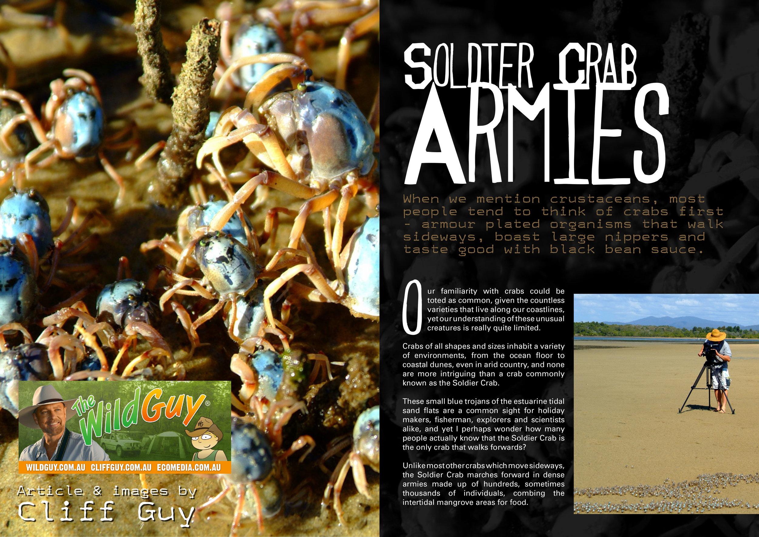 Soldier Crab Armies-1.jpg