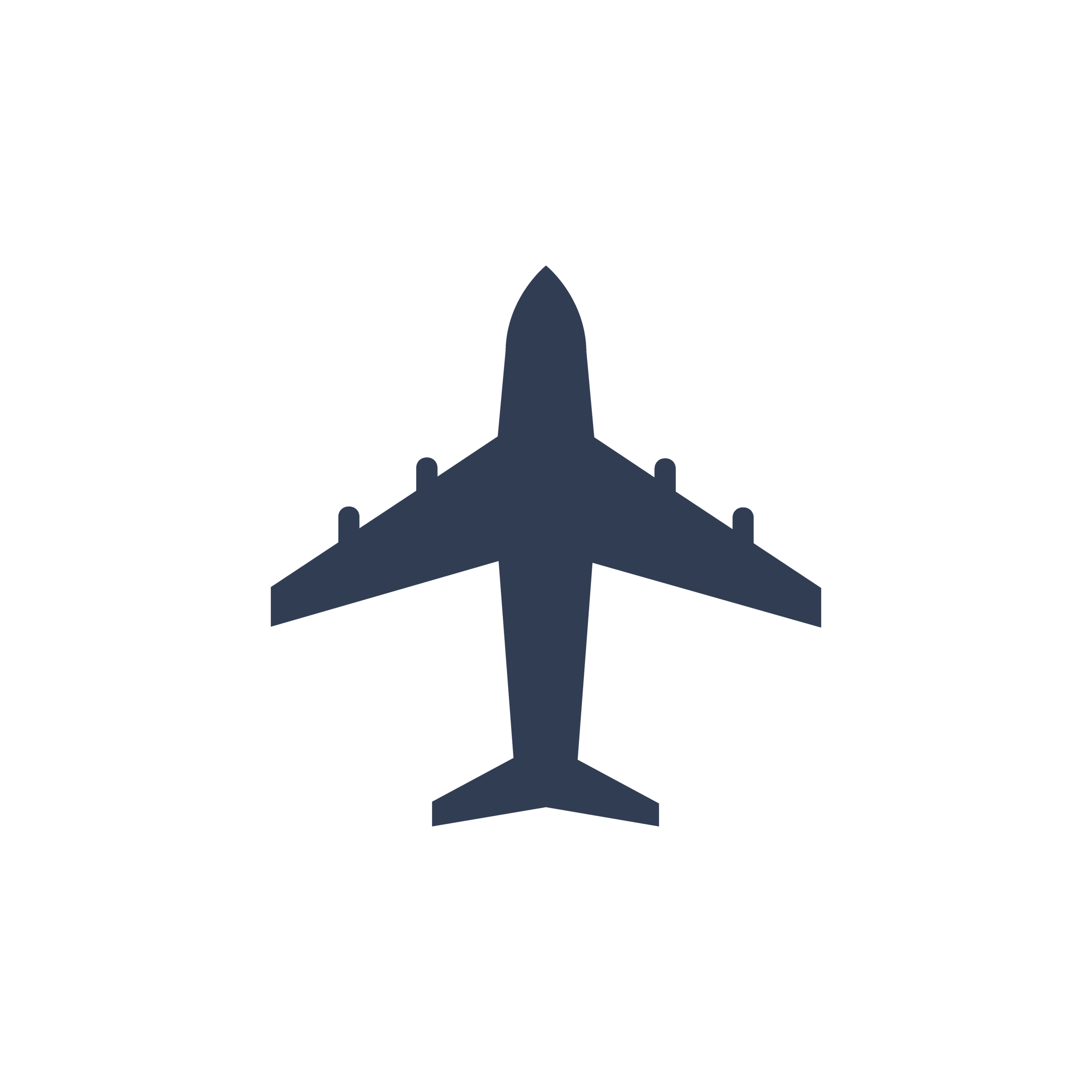 passport-beerlandia-plane-icon-01.png