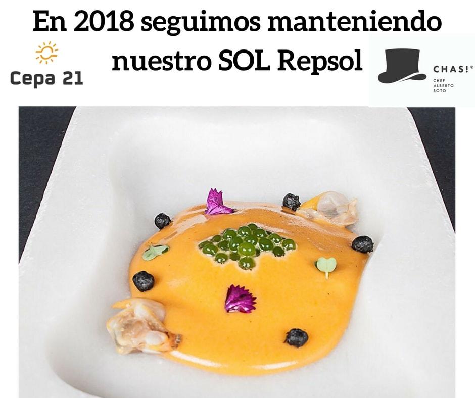 Sol-Repsol-171115-min.jpg
