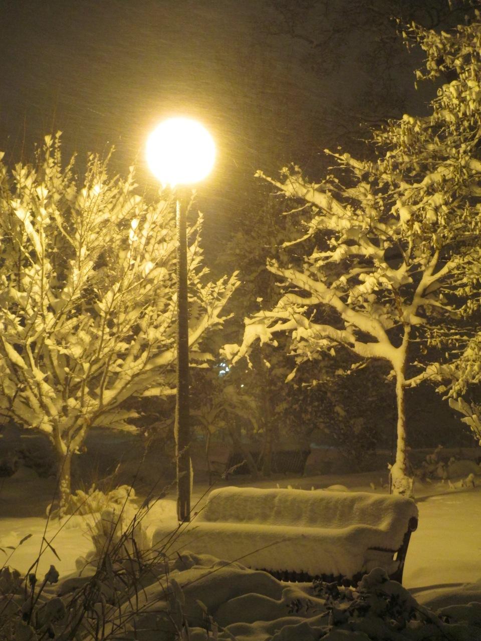 Winter night TM.jpg