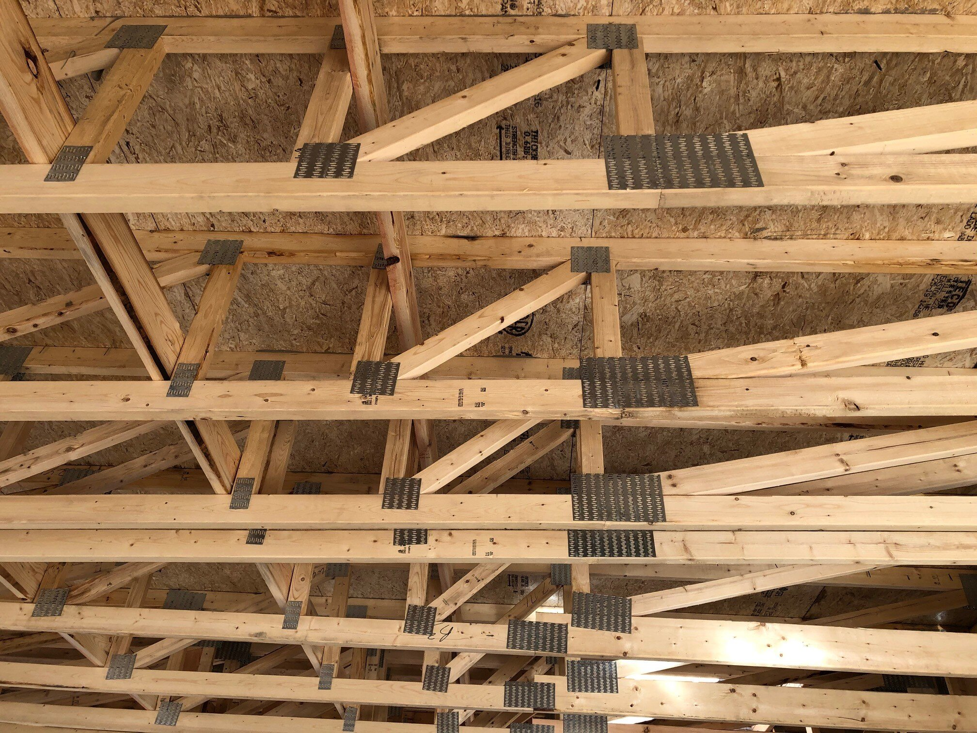Open-web trusses under the roof of Osprey Point.  Image via Granoff Architects.
