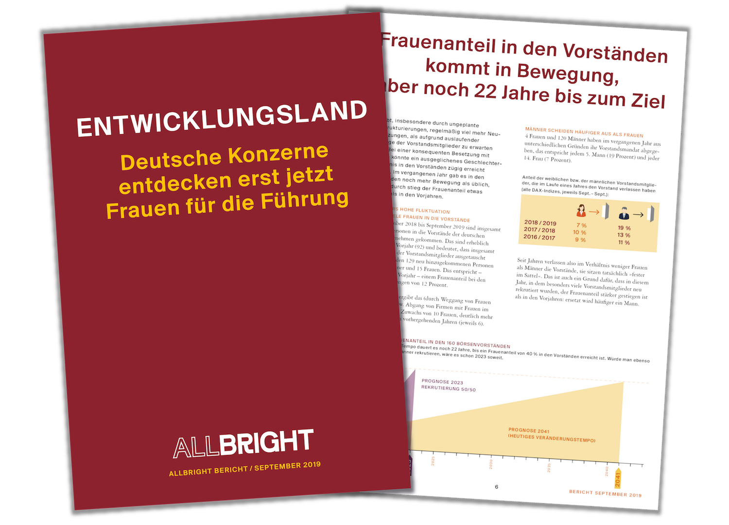 Entwicklungsland_Cover.png