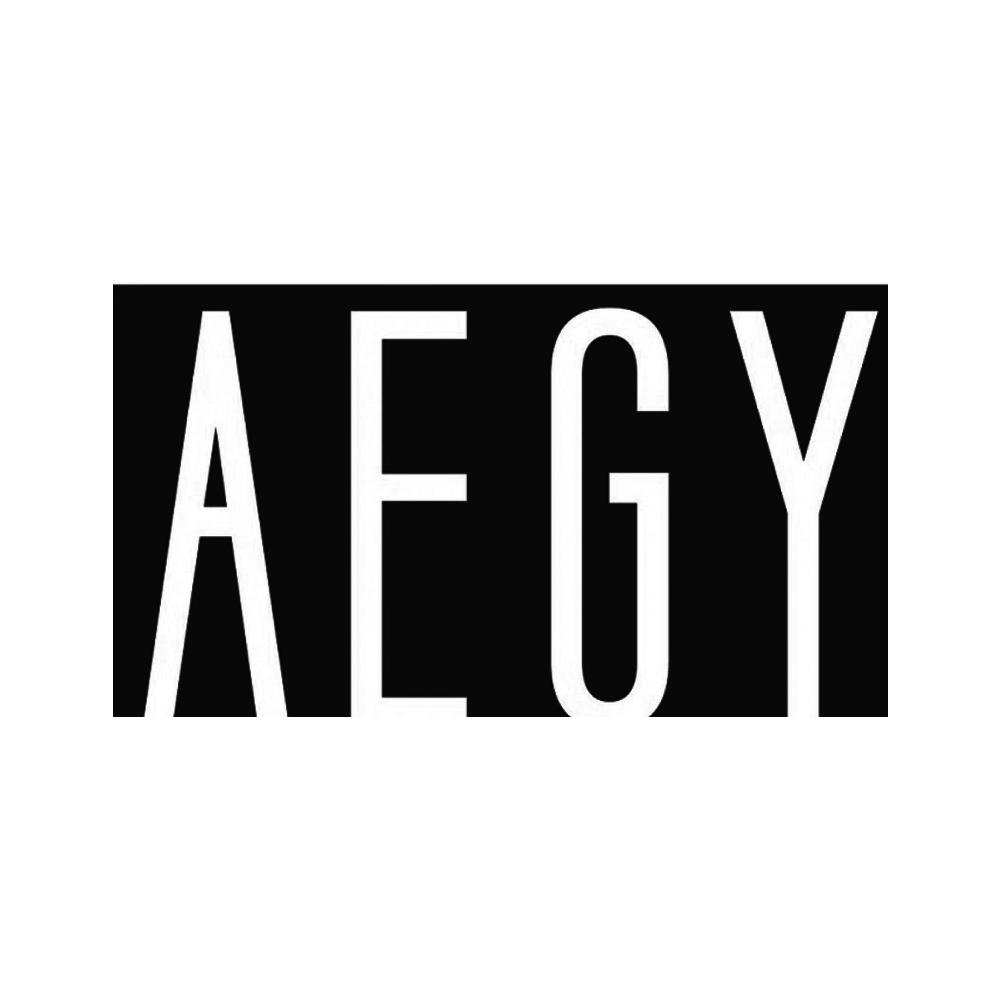 aegy-logo.jpg