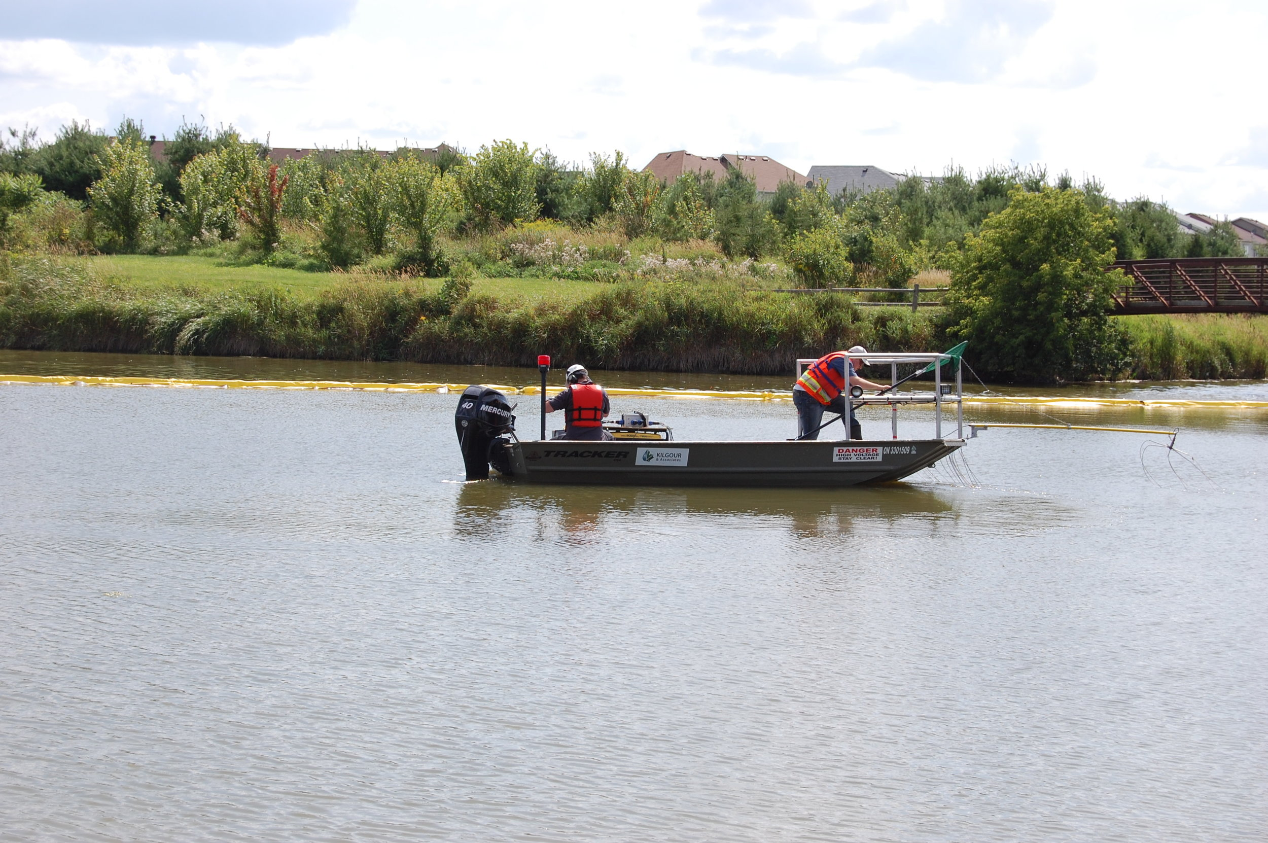 Fish removal by boat electrofishing
