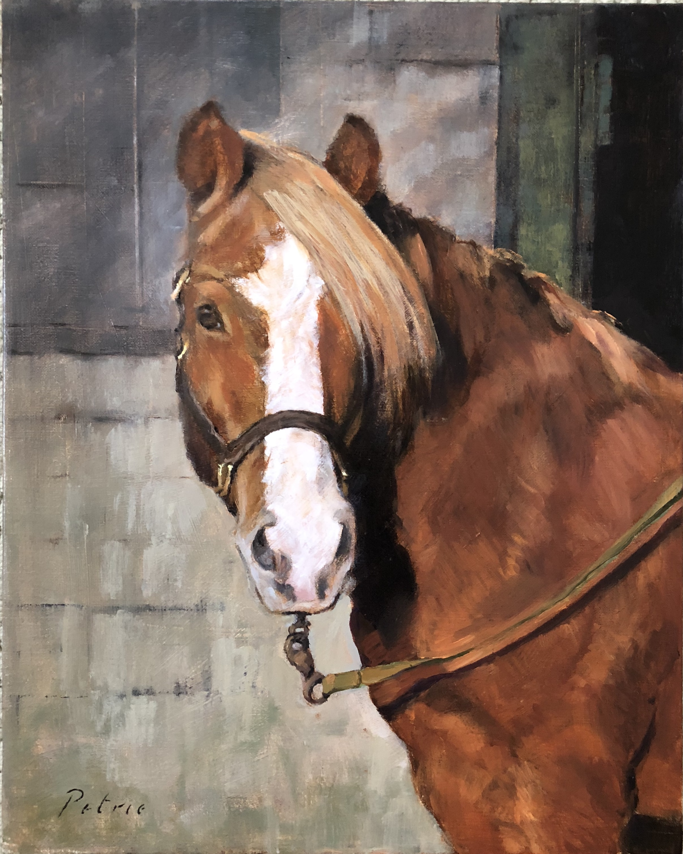Favorite Pony