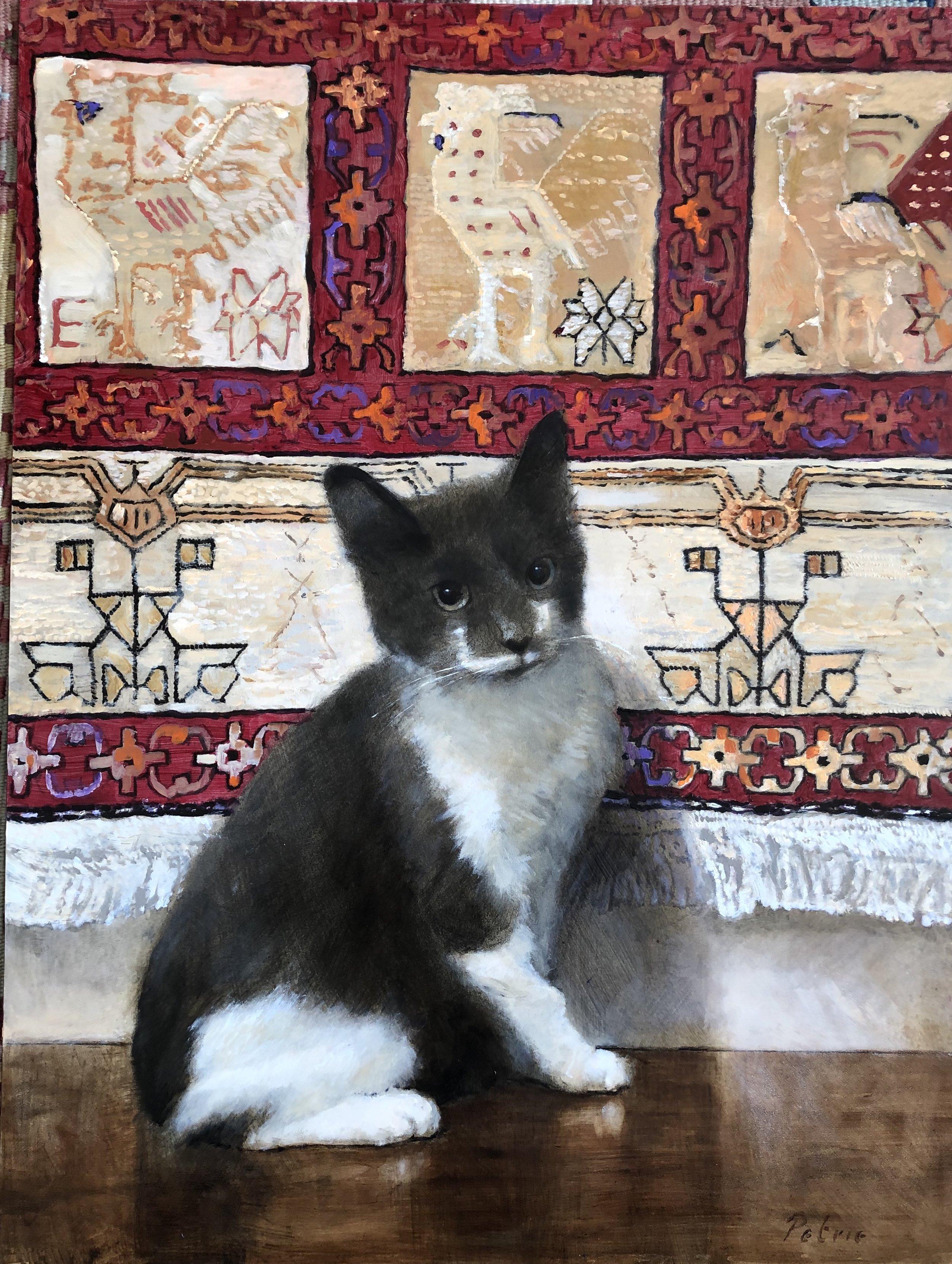 Curatorial Cats