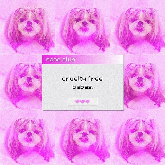 always + forever 💘 #maneclubnyc #crueltyfree