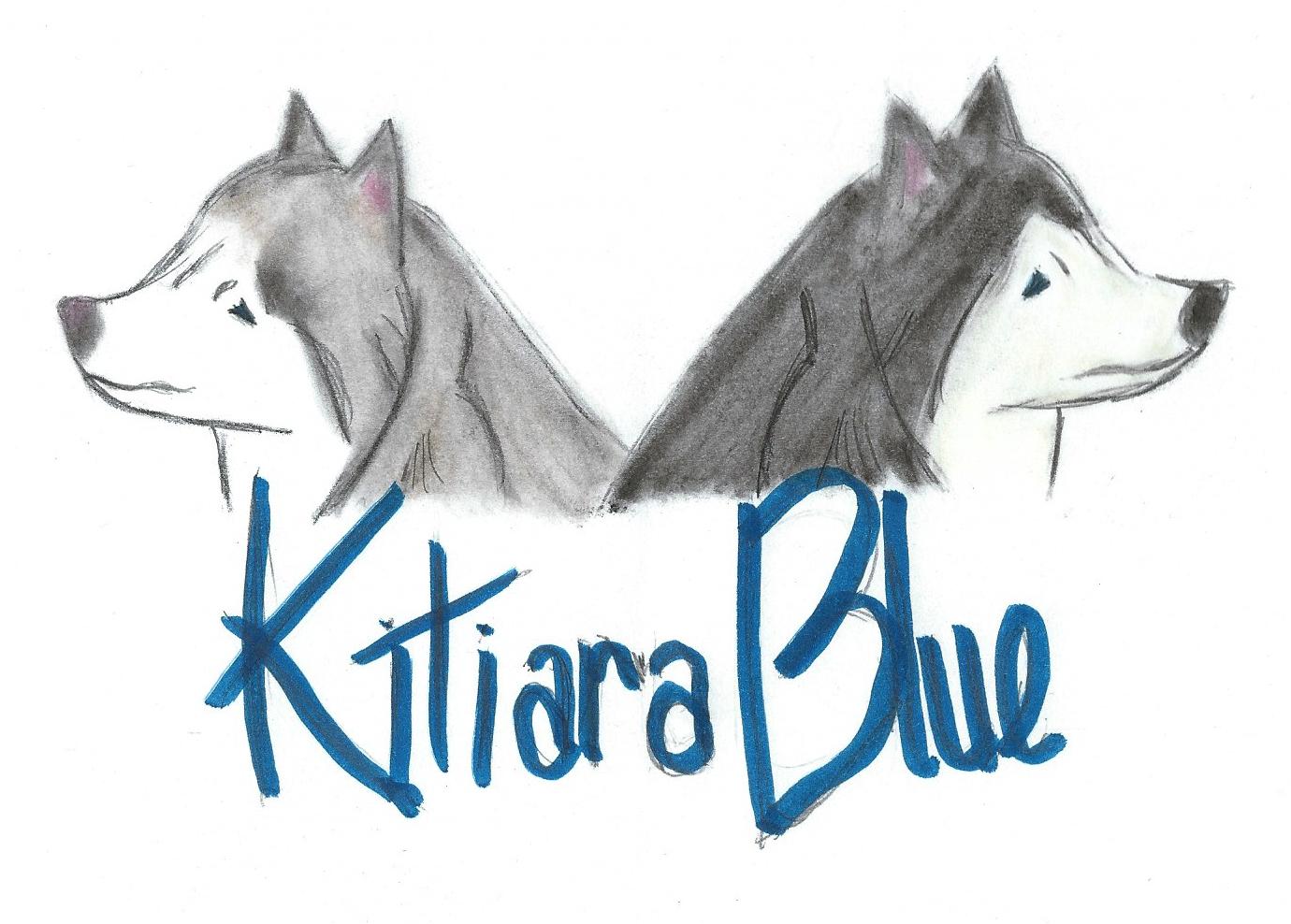Kitiara Blue Media Logo 2016 copy.jpg