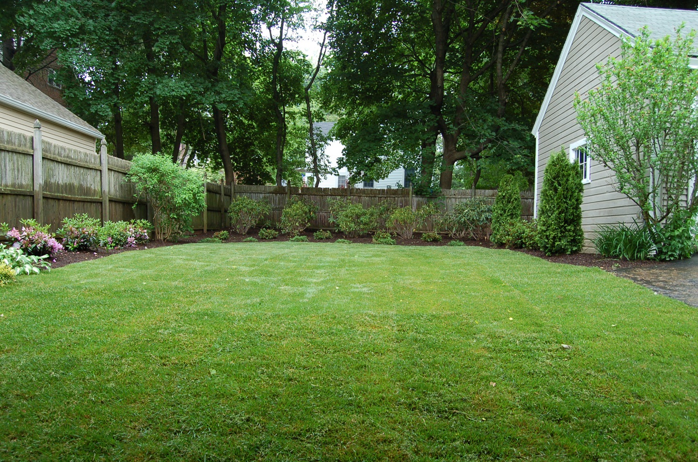 Stunning lawn installation in Newington, CT