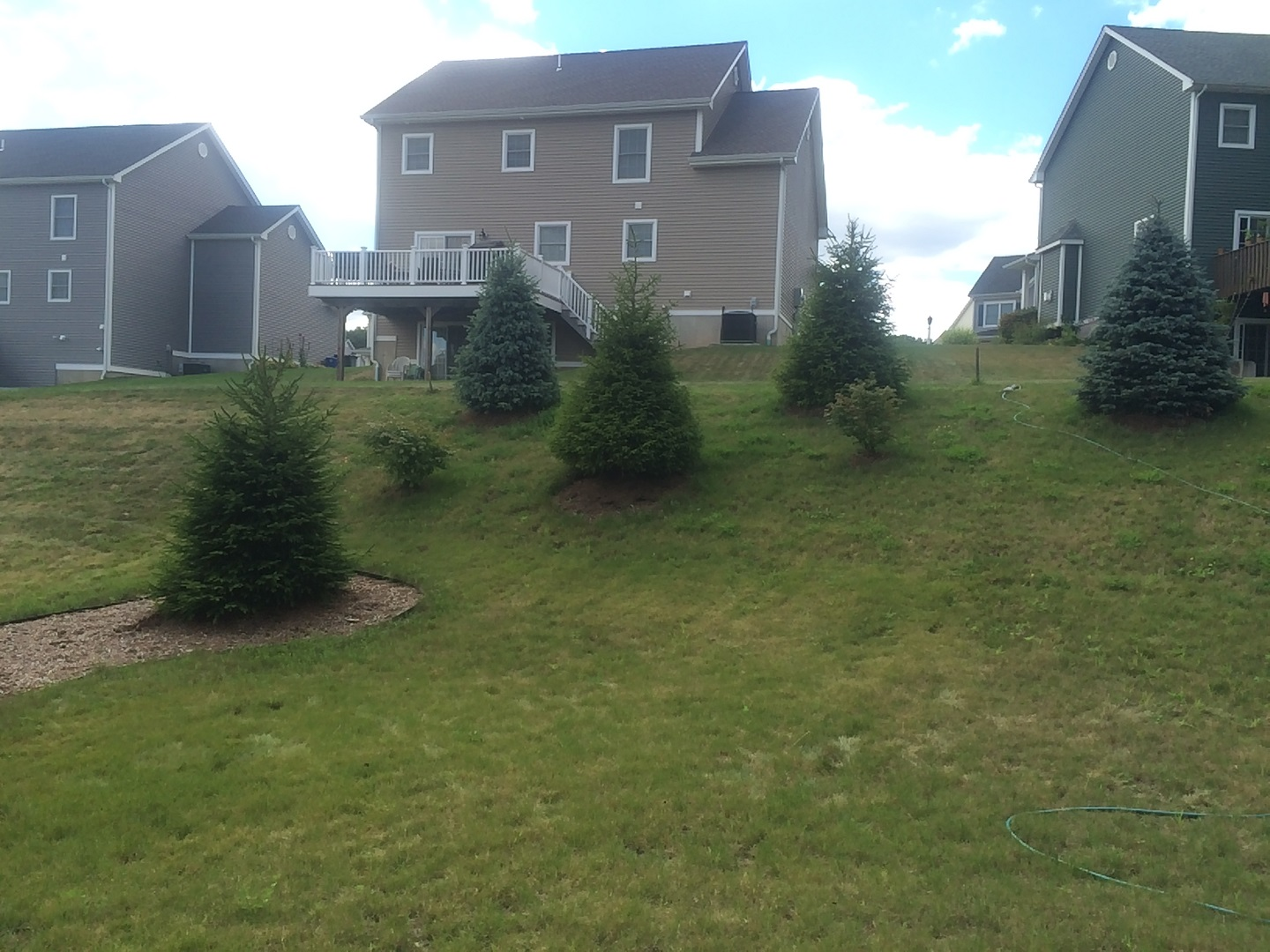 Landscaping in Newington CT