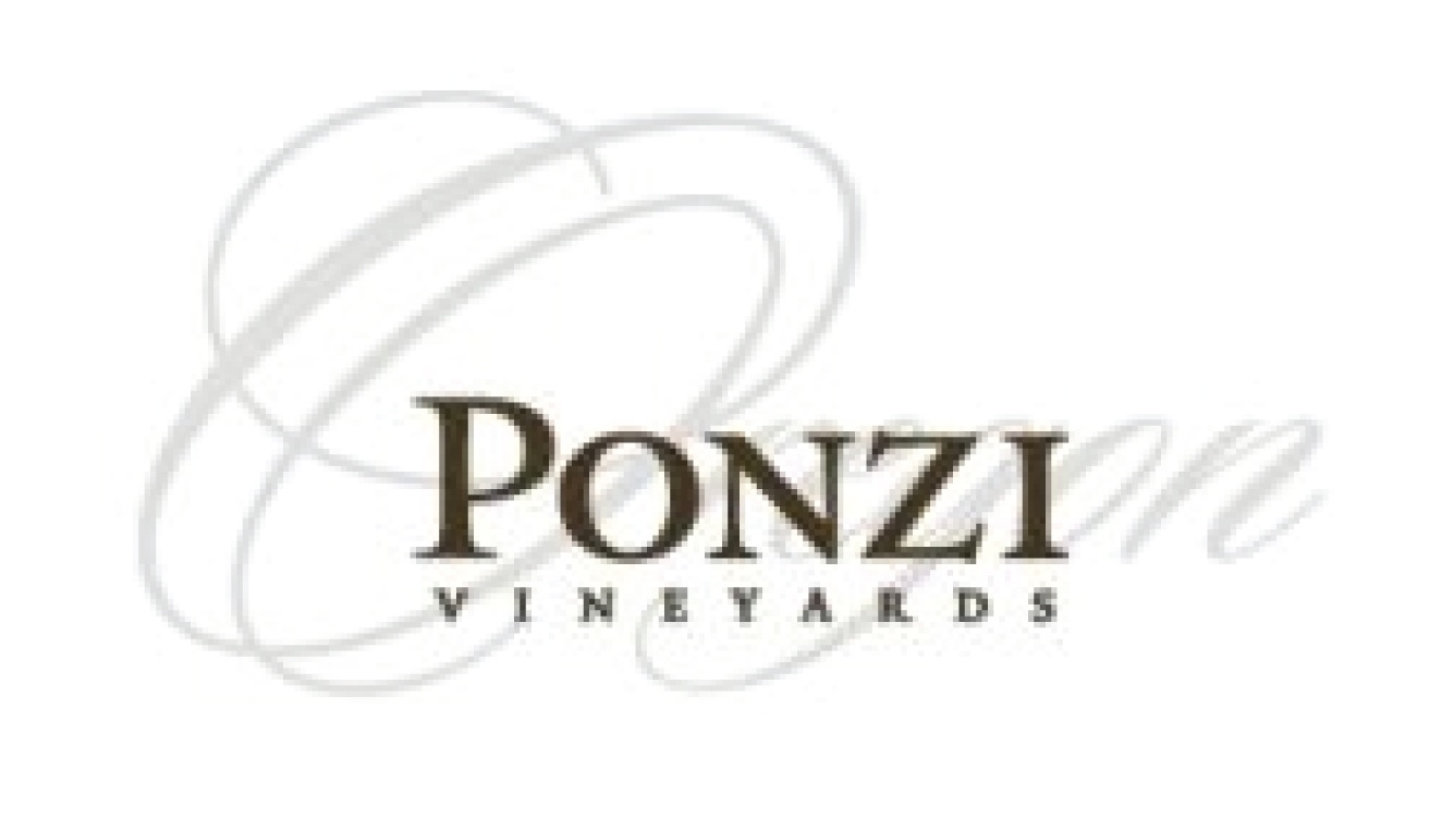 Ponzi-01.jpg