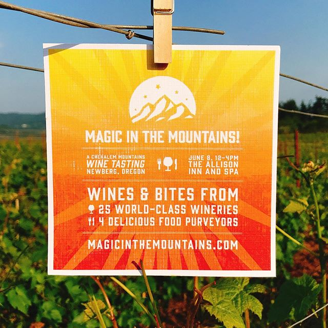 💥25 World-Class Wineries! 🍷50 Incredible Wines 👩🏼‍🍳 4 Amazing Restaurants serving delicious bites! 😋 We're getting so excited for Magic In The Mountains on June 8th at the @allisoninnspa !! Just $45 for an amazing afternoon of great wine, food, and fun! ‼️ Pre-Sale tix are going fast - link in bio! . . . . . #chehalemmountainsava #chehalemmountains #willamettevalley #wvwines #oregonwine #oregonwinecountry #magicinthemountains #pinotnoir #pinot #oregonpinot #yamhillcounty #pdx #pdxeats #portland #portlandfoodie #pdxwine #portlanddrinks #pdxdrinks #pdxnow #oregonlive #wineandfood #foodandwine #portland #portlandoregon #newbergoregon #pinotperfect #orpinot #gowinetasting #oregonwinemonth #winefestival