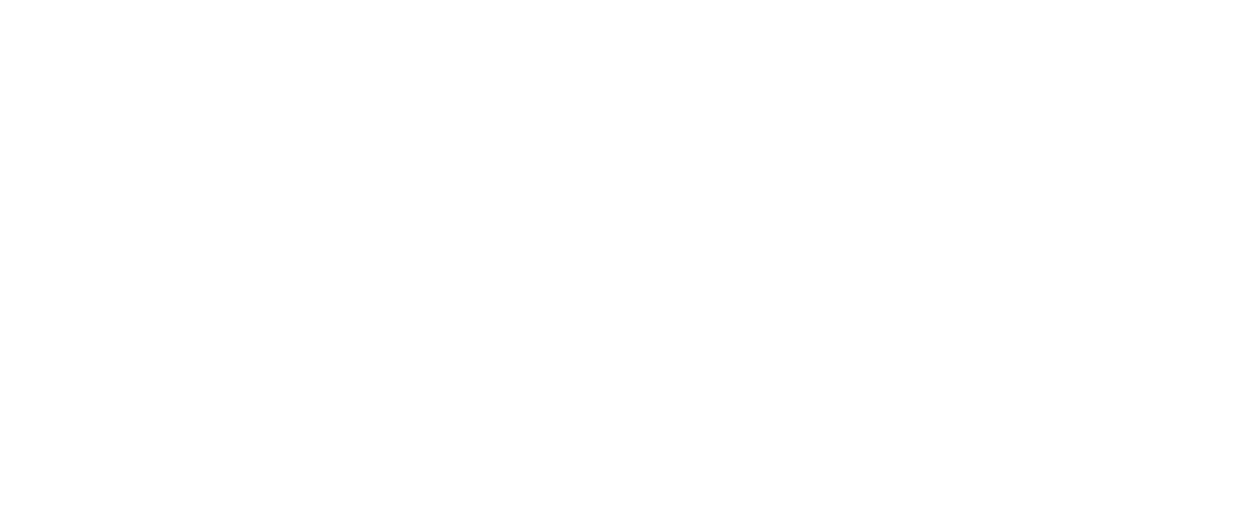 Black Diamon Logo White (2).png