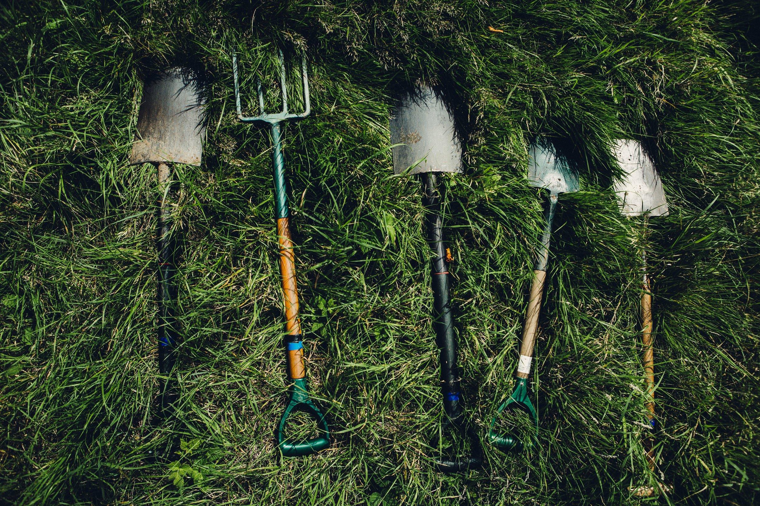 Mulching -