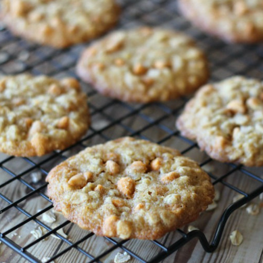 Oatmeal butterscotch cookies - I make these every Christmas!