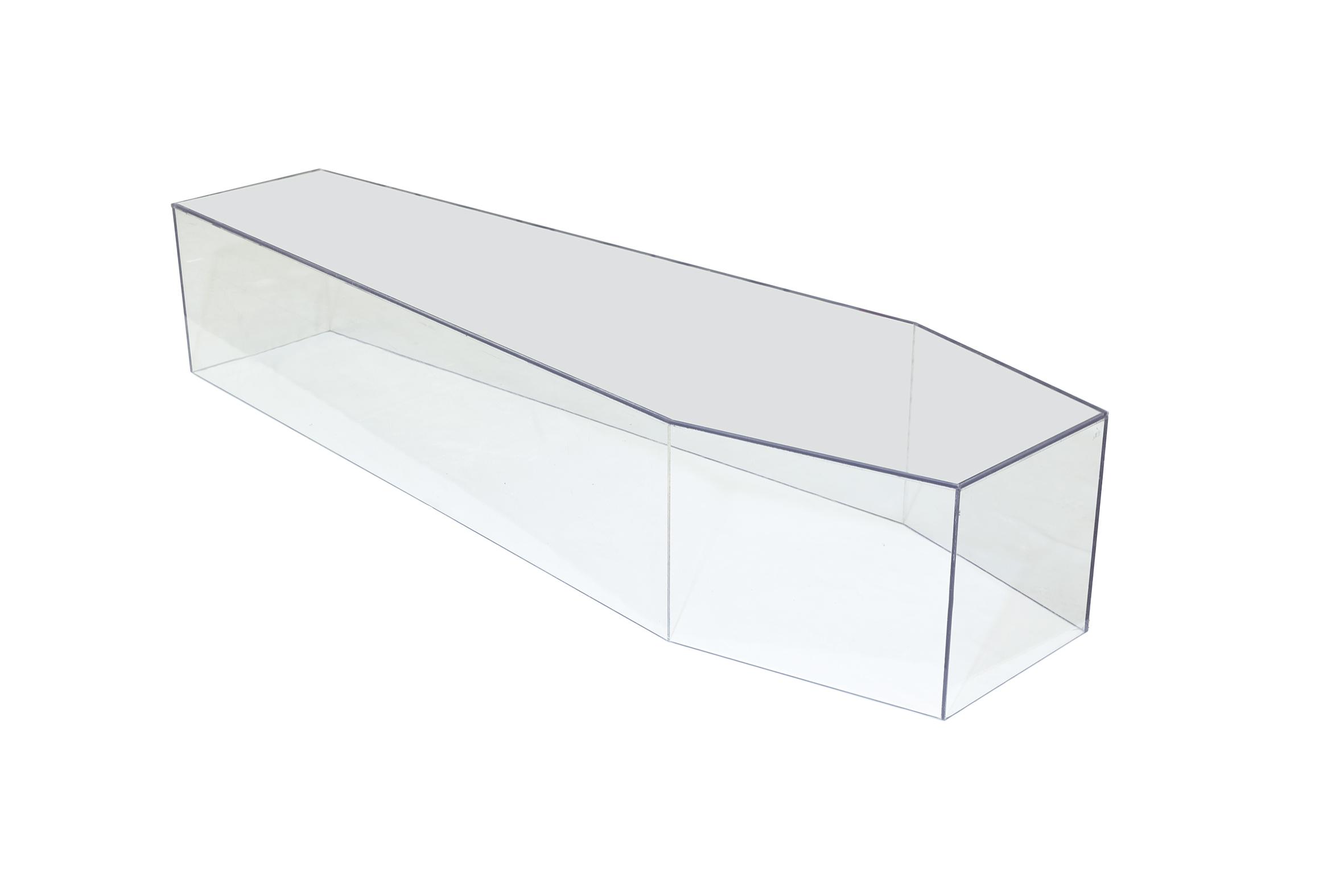 Plexiglas coffin (no lid) € 250,- - Buy