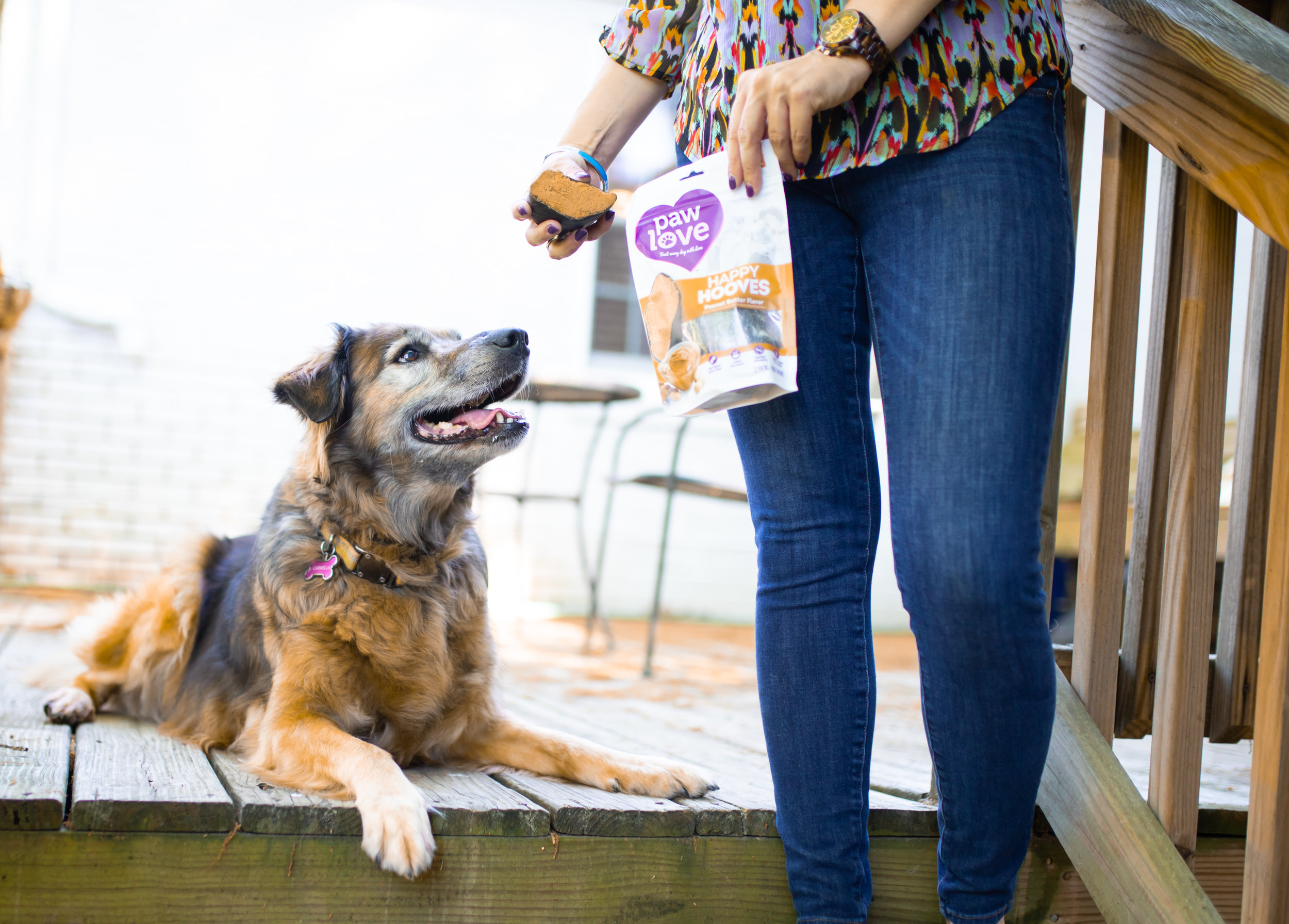 creamy peanut butter flavor that dogs can never get enough of -