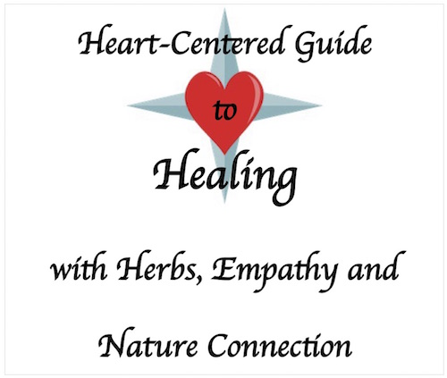 Heart-Centred Guide to  Creating Your Healing Plan v3 cover image 500x433.jpg