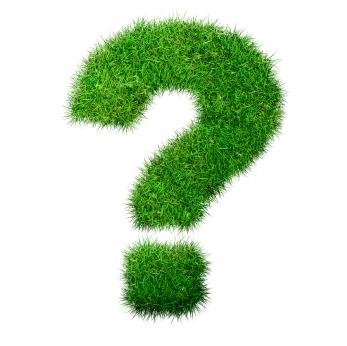 Grass_Question-Mark.jpg