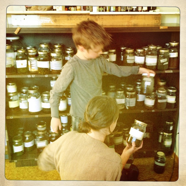 apprentices in apothecary