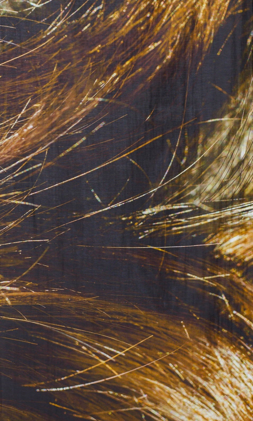 Scarf Brown detail .jpg