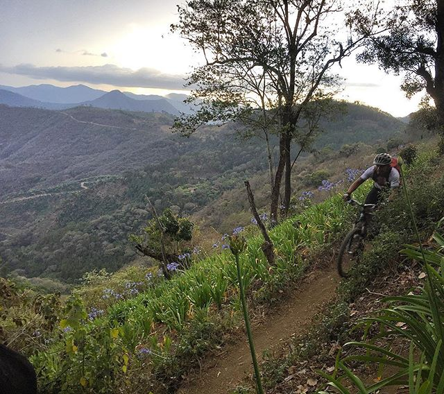 Happy Independence Day Guatemala!  The freedom you get from being deep in the woods on a mountain bike is the best way to celebrate! #indepenceday #diadelaindependencia #guatemala #antigua #rideyourbike #mtblife #mtbdaily #epicguatemala #bikeguatemalacom #oldtownoutfitters #adventureguatemala #antiguabicyclecoop #konabikes