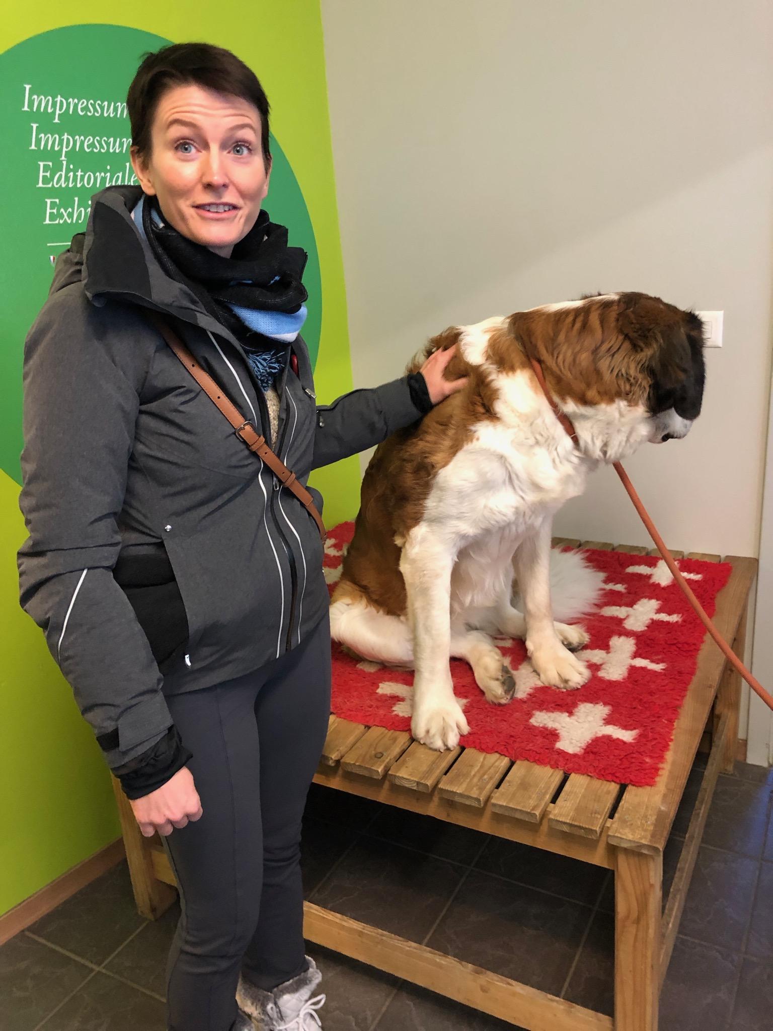 Proof of the petting. Barryland in Martigny, Switzerland, December 2018.