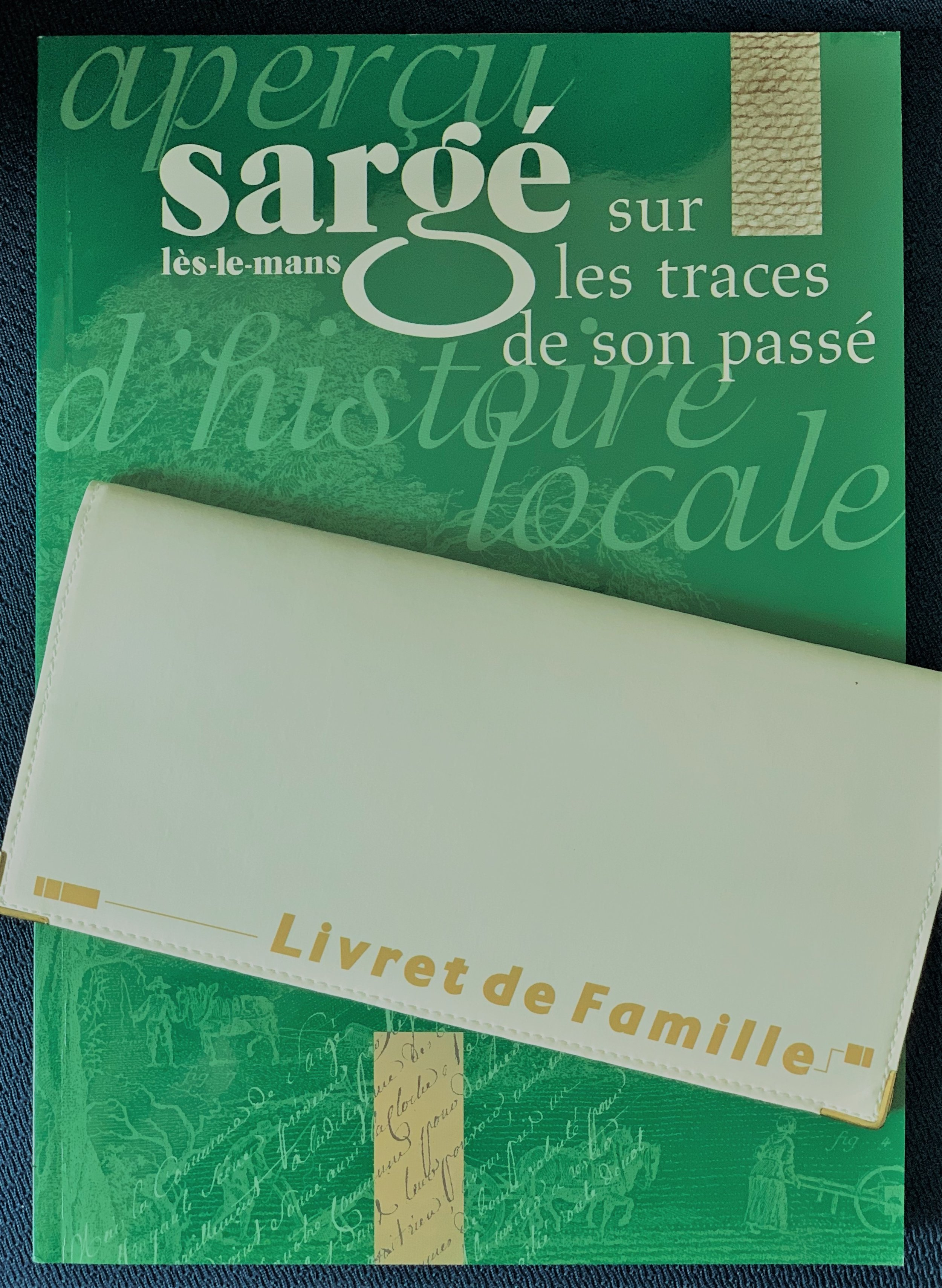The mayor's gift of a book on his small town in France and our French Book of the Family.
