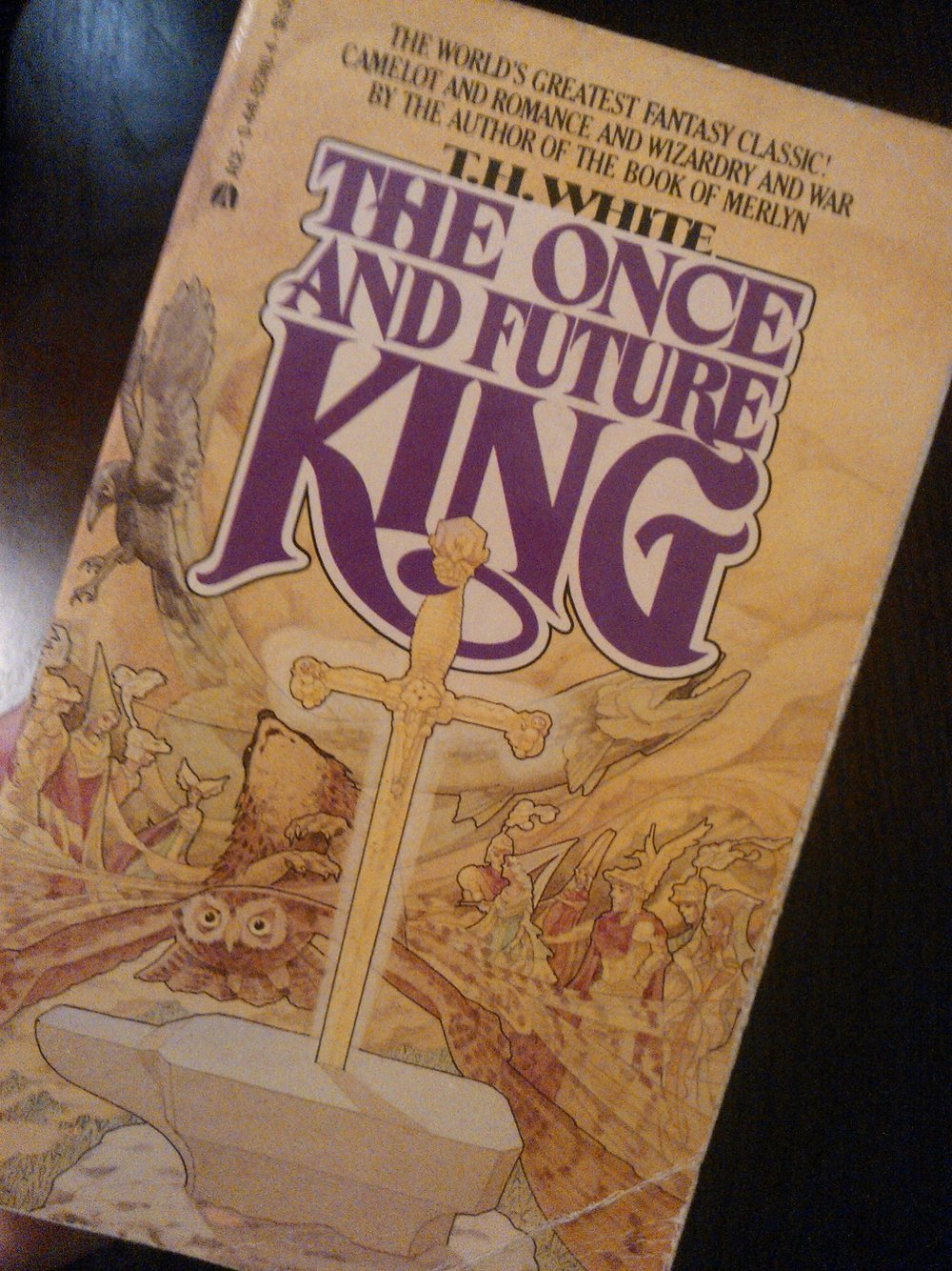 My original, 7th grade personal copy of T. H. White's The Once and Future King.