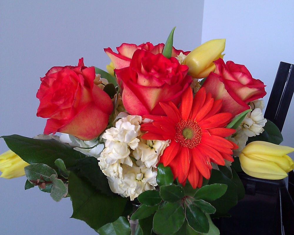 Flowers in my office. May 2012.