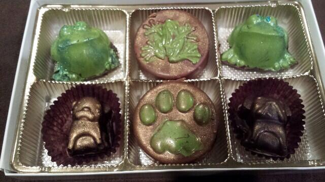 Custom-made frog and dog chocolates from Chocolat d'Arte for FrogDog client gifts. November 2013.