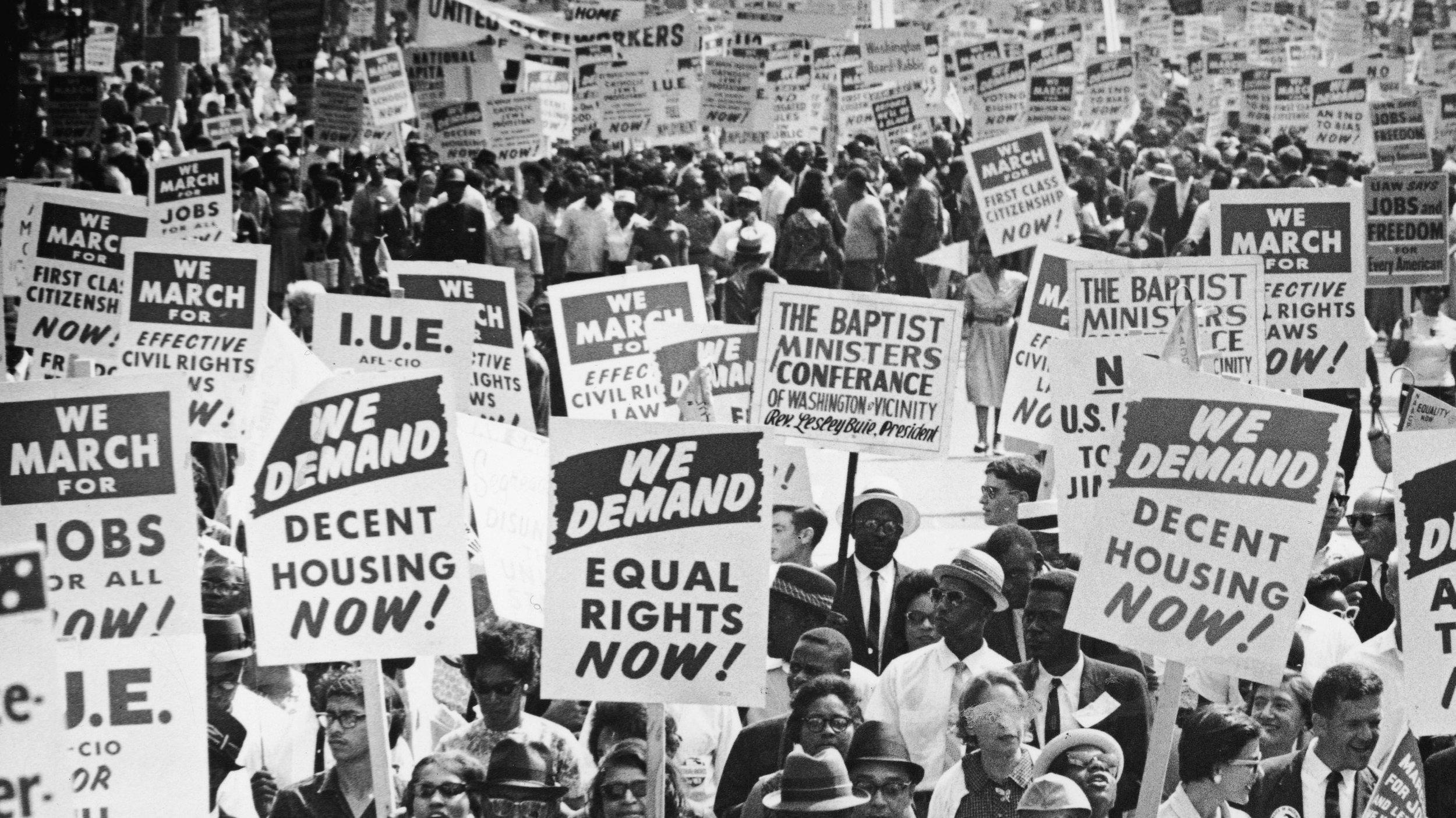 Civil Rights litter - Velvet Dandy´s Malcolm XVelvet Dandy´s Martin Luther King  Velvet Dandy´s Rosa ParksVelvet Dandy´s Dorothy Cotton  Velvet Dandy´s SeptimaClark