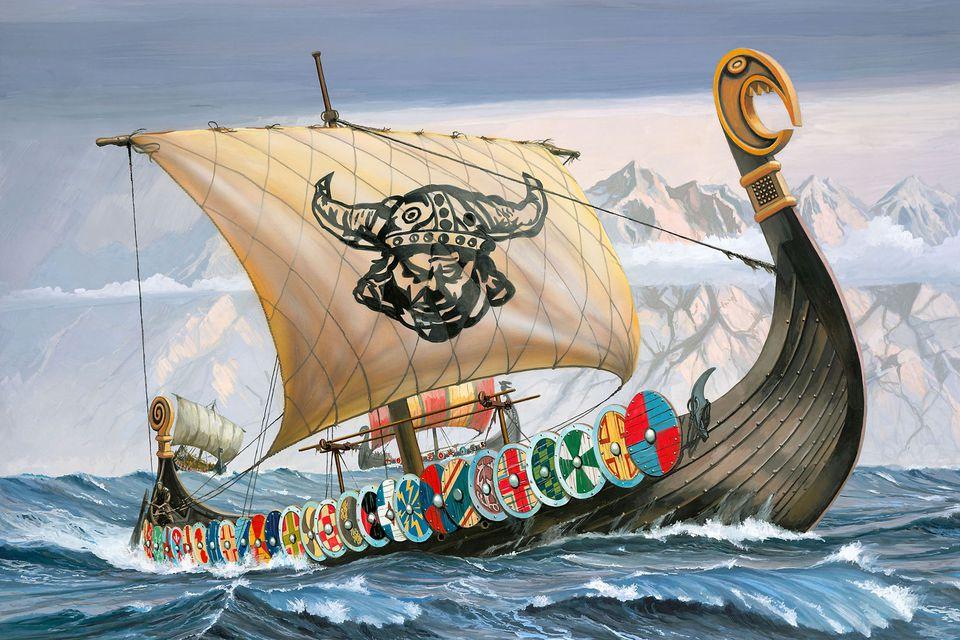 Viking litter - Velvet Dandy´s Sigrid StorrådaVelvet Dandy´s Ragnhild Barfot  Velvet Dandy´s Margareta Fredkulla  Velvet Dandy´s Tora Guttormsdotter  Velvet Dandy´s Sven Tveskägg  Velvet Dandy´s Harald Blåtand