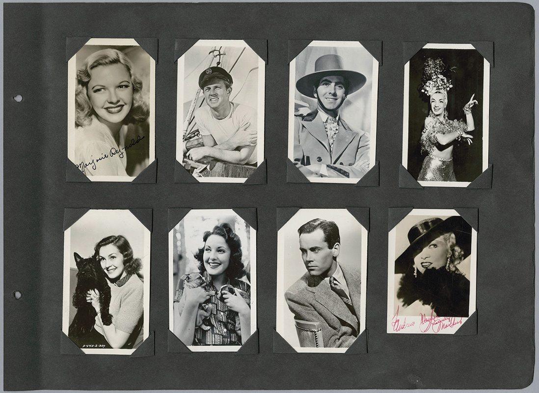 Warholstars litter - Velvet Dandy´s Baby Betty  Velvet Dandy´s Ingrid Superstar  Velvet Dandy´s Valerie Solanis  Velvet Dandy´s Electrah PognosVelvet Dandy´s Candy Darling  Velvet Dandy´s Billy Name