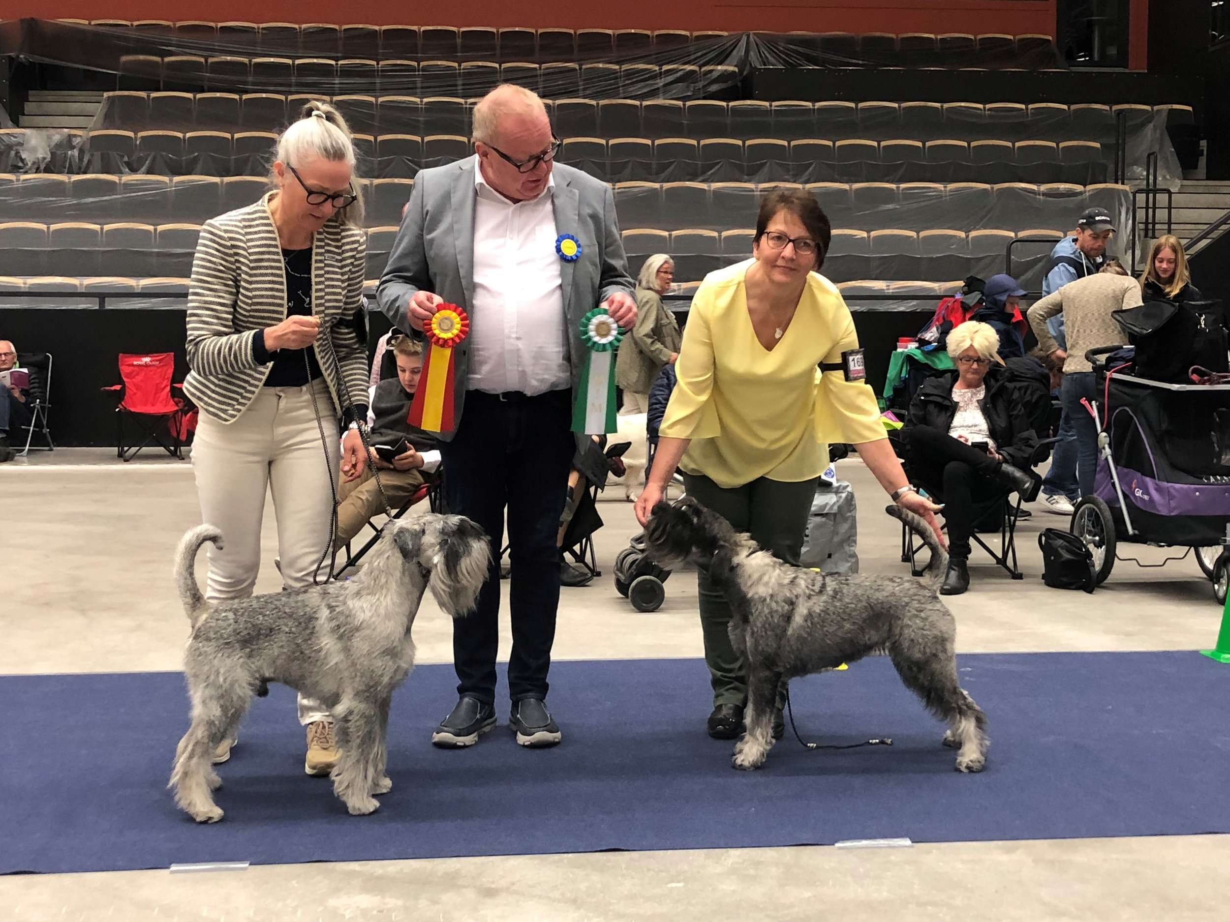 VDs Neappolitan Dynamite BOB and Mabel Alarm Beskyd BOS with judge Johnny Andersson
