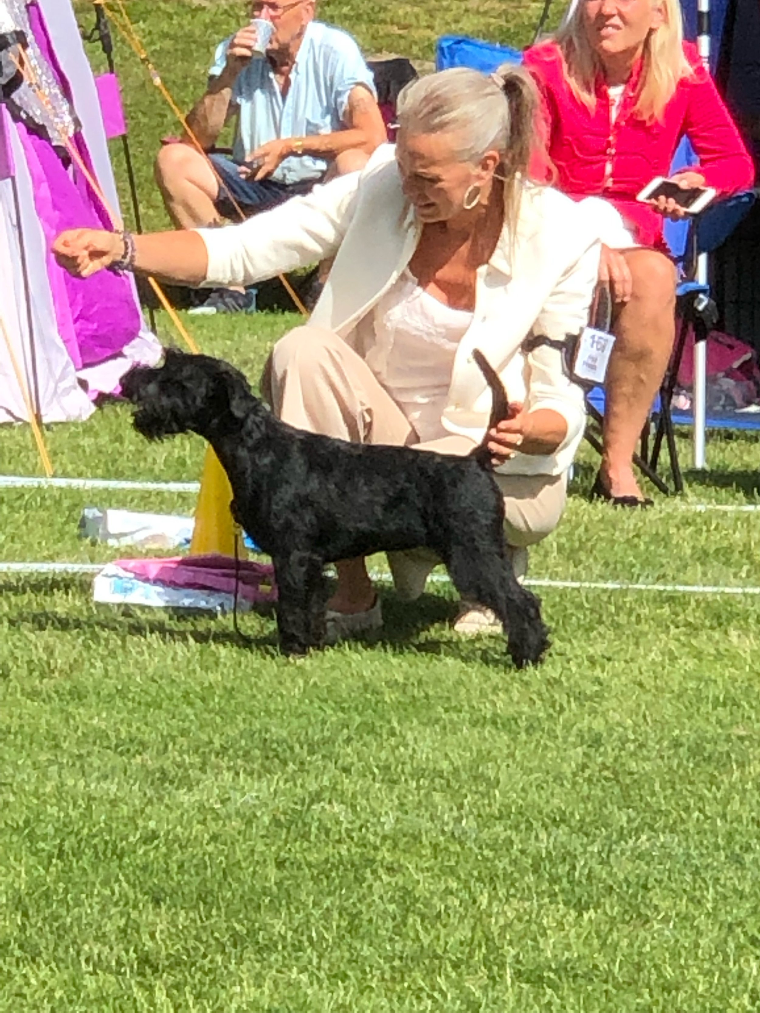 BEST IN SHOW puppy 4-6 m at her very first steps in the showring ever Velvet Dandy´s Ludmila
